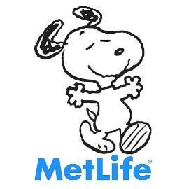 Metlife provider in Beaufort SC